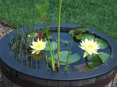 Jardinitis c mo construir un estanque en el jard n for Construir estanque