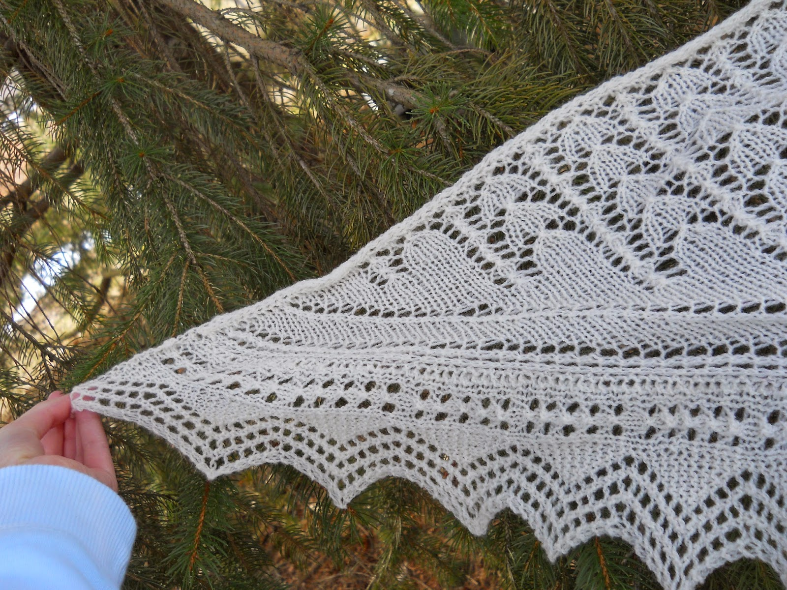 http://www.ravelry.com/projects/gizmo098/snowdrop-shawl
