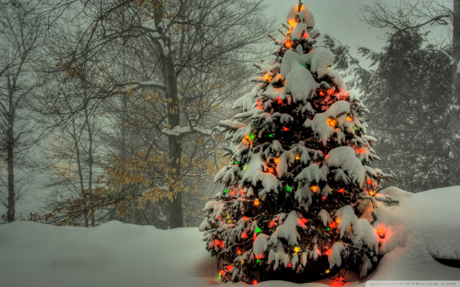 pictures of outdoor xmas decorations