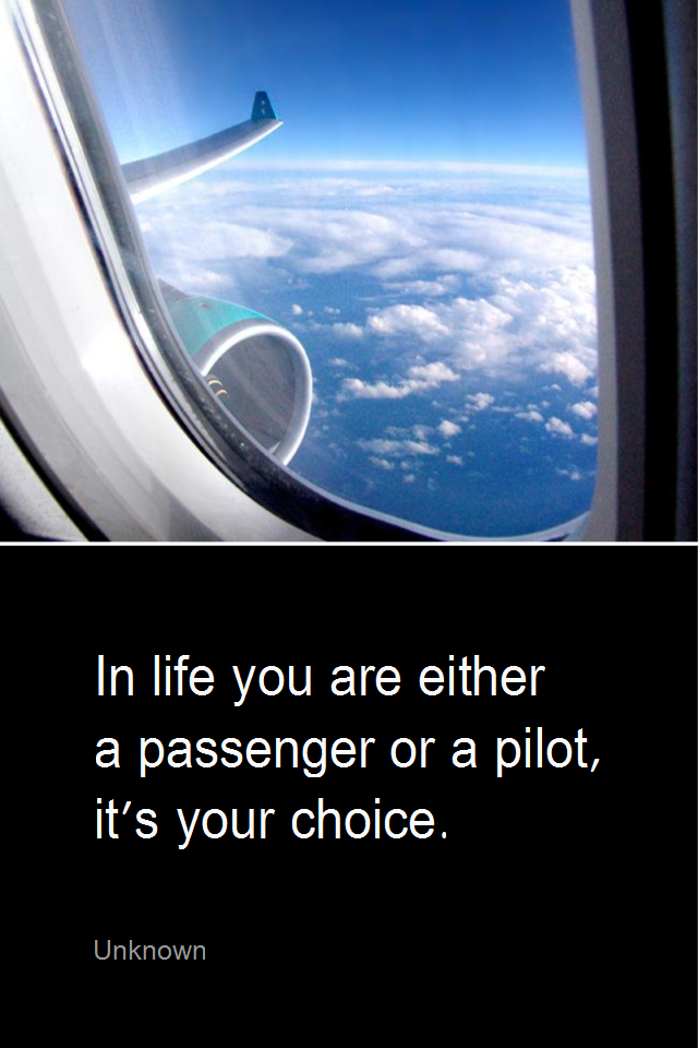 visual quote - image quotation for LIFE - In life you are either a passenger or a pilot, it's your choice. - Unknown