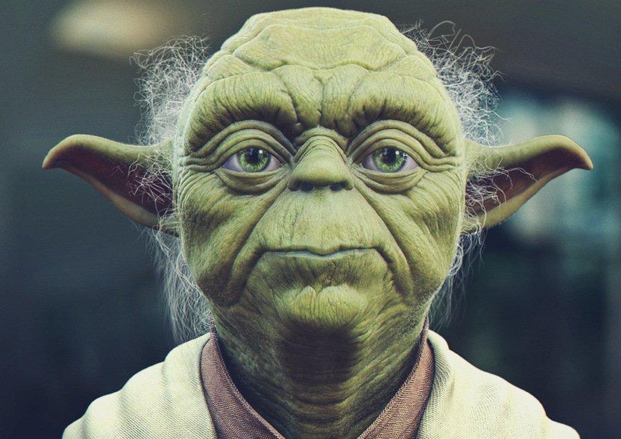 Prof. Luís Eduardo (LEDU Yoda)