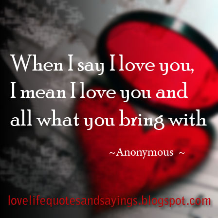 When I say I love you, I mean I love you and all what you bring with