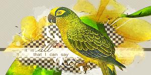 http://martwy-sezon.blogspot.com/