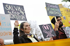 CHILE: Marcha contra Monsanto en Santiago