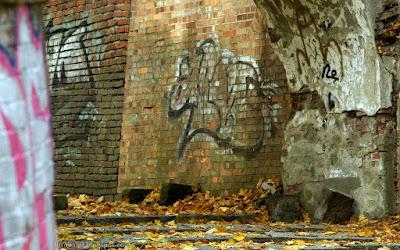 http://fotobabij.blogspot.com/2015/11/puawskie-graffiti-na-tapete.html