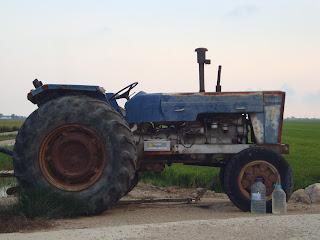 Old Blue Tractor - Sant Carles de La Rápita