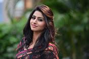 Shamili dazzling photos in saree-thumbnail-3