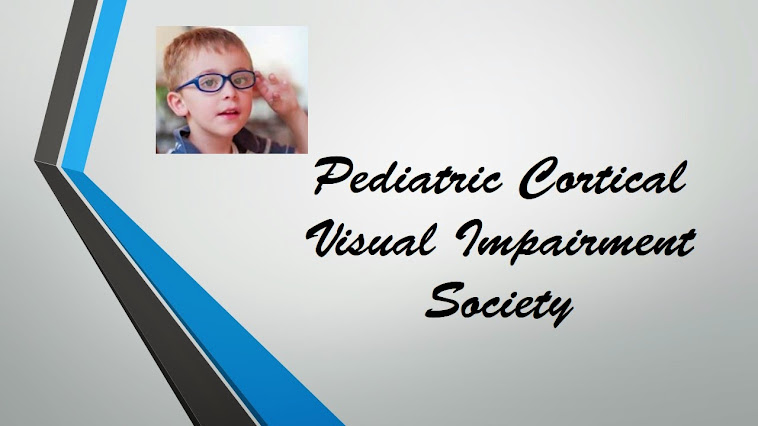 Pediatric Cortical Visual Impairment Society