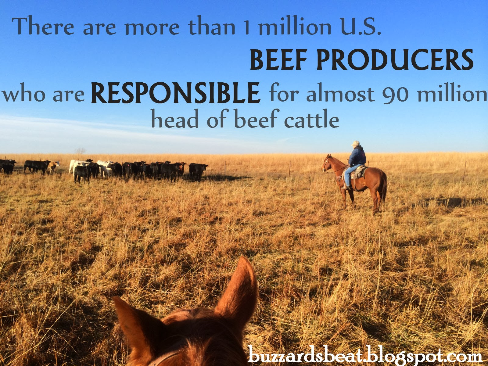 Responsible U.S. beef producers