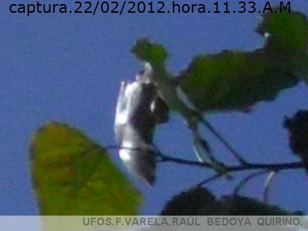 UFO SONDA,TUBULAR.INVISIBLE AL OJO HUMANO.***