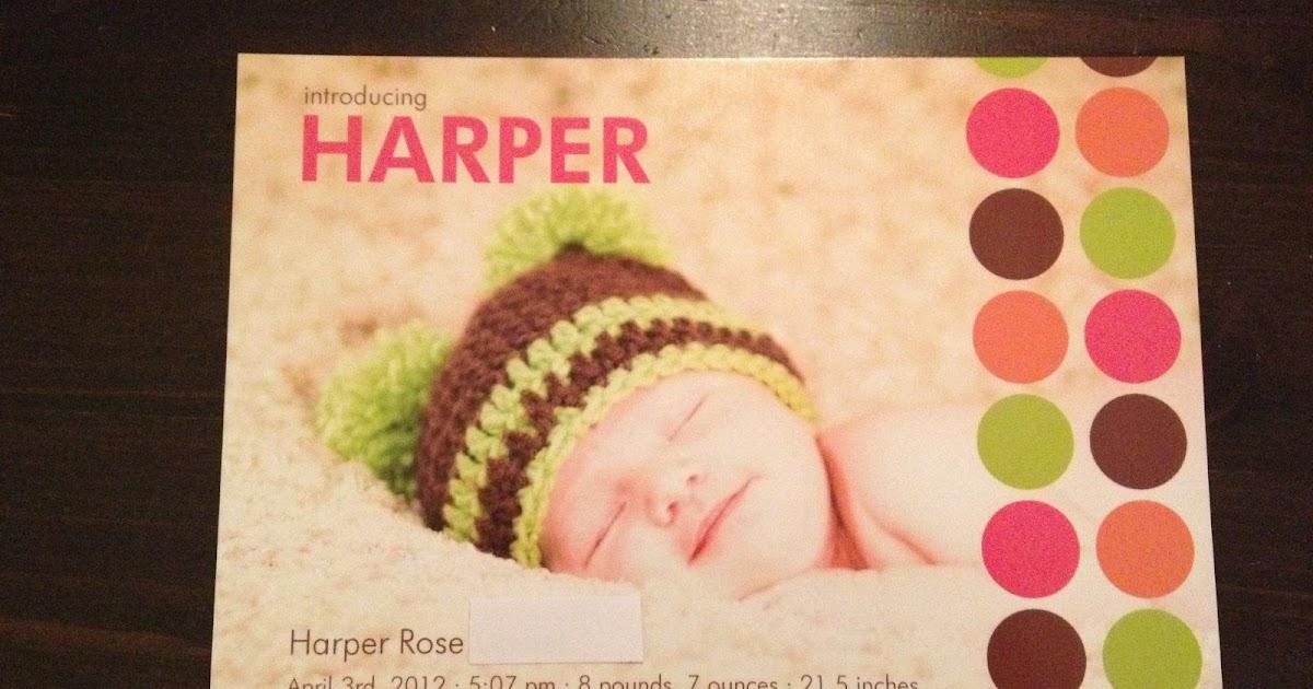 Harpers Little T Yorkies Oak Island Cn
