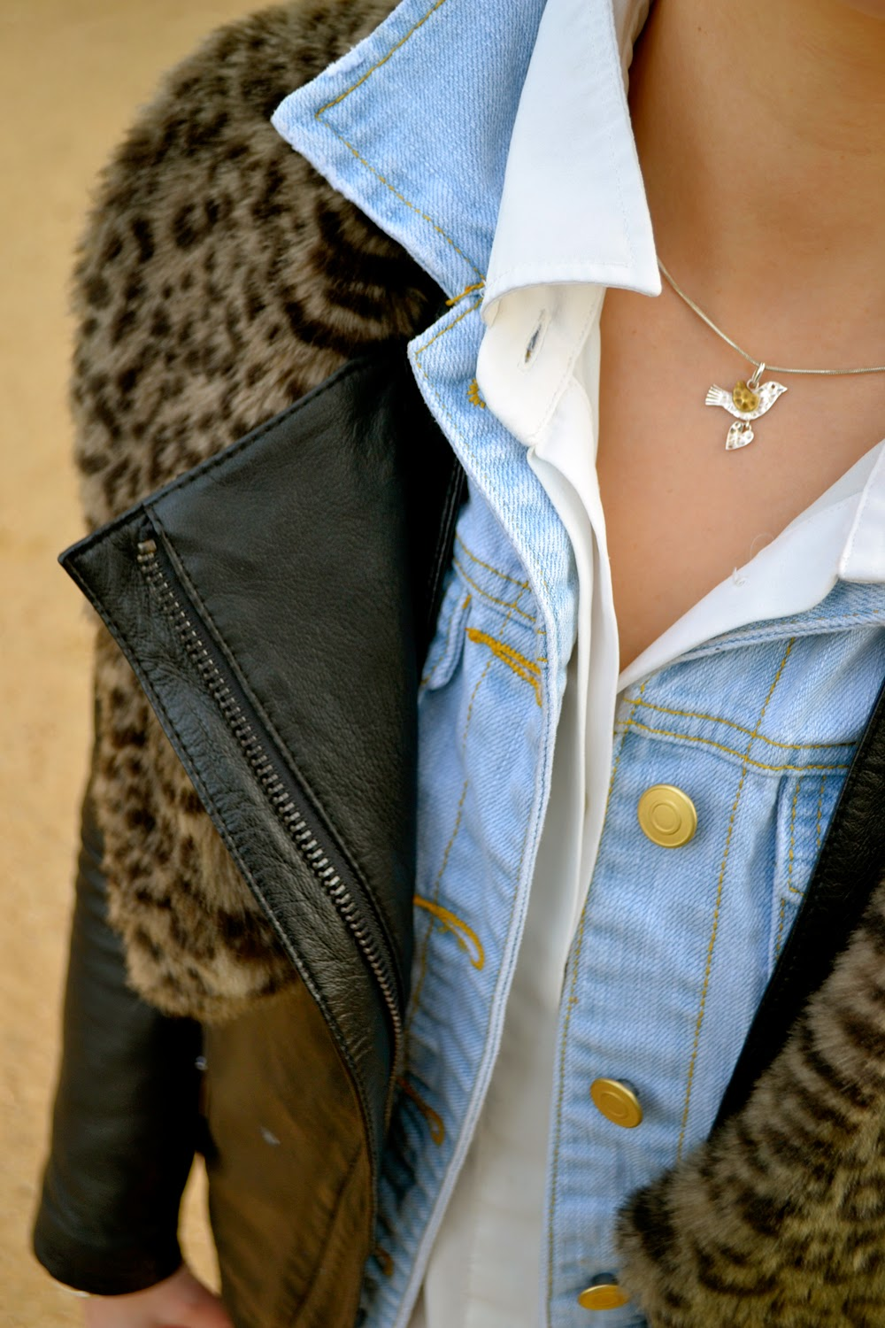 Double jackets; two jackets; Collars; denim; leather; leopard; dujouriadore