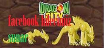 Dragon City 1000 Gems Hilesi 2014
