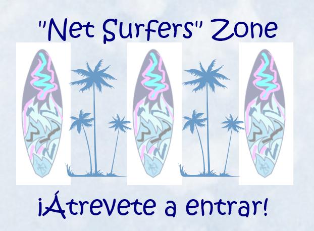 Net Surfers Zone