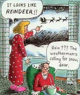 Wife husband - it looks like reindeer - rain? The weatherman's calling for snow - funny christmas cartoon -