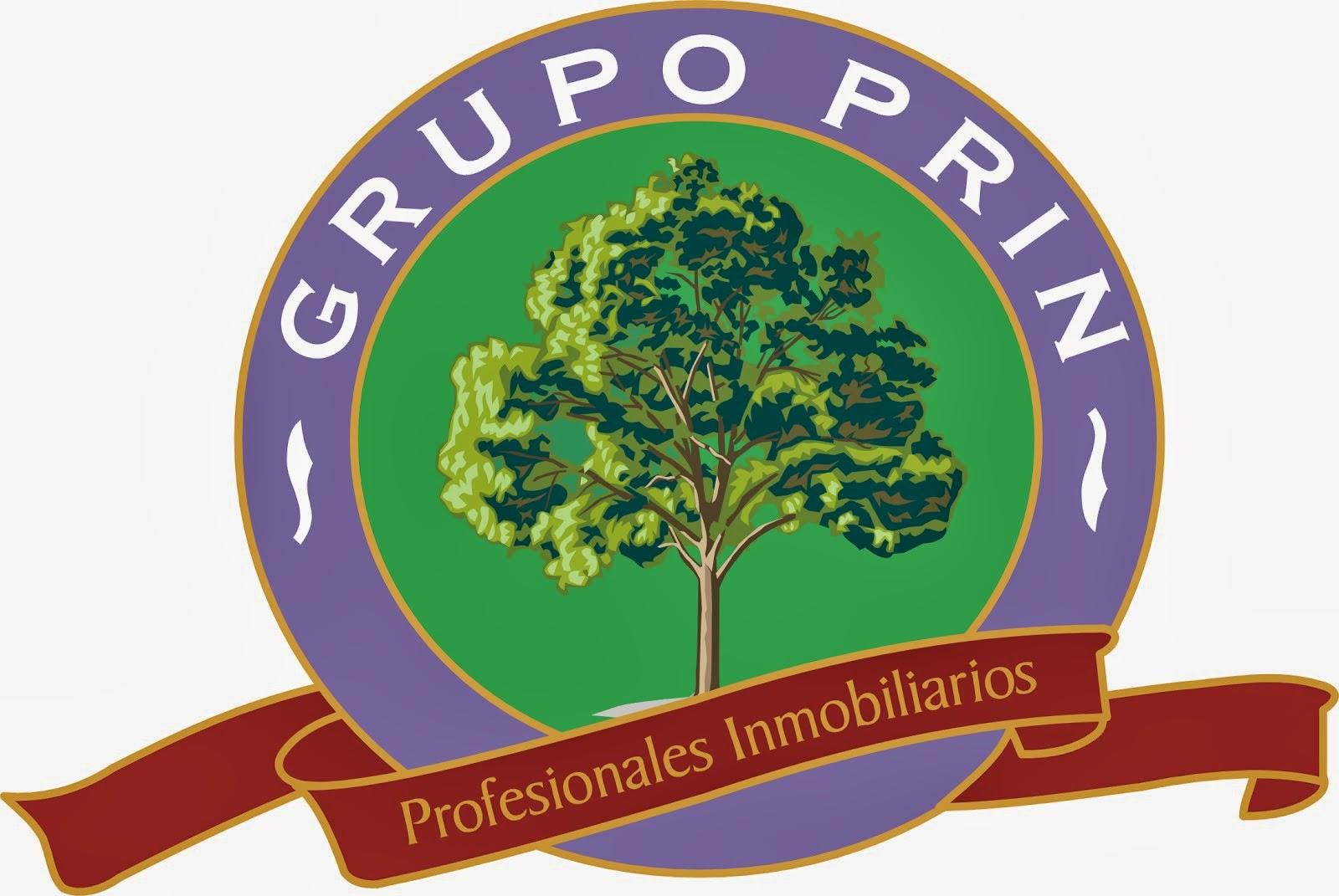 Integrante del Grupo PRIN