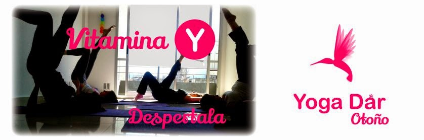 Yoga Dar