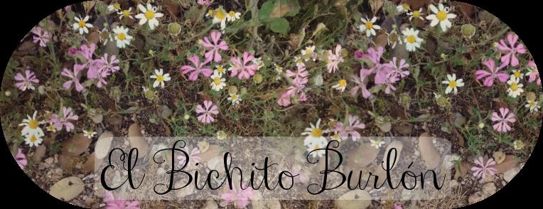 El Bichito Burlón
