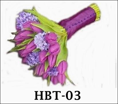 hbt-01