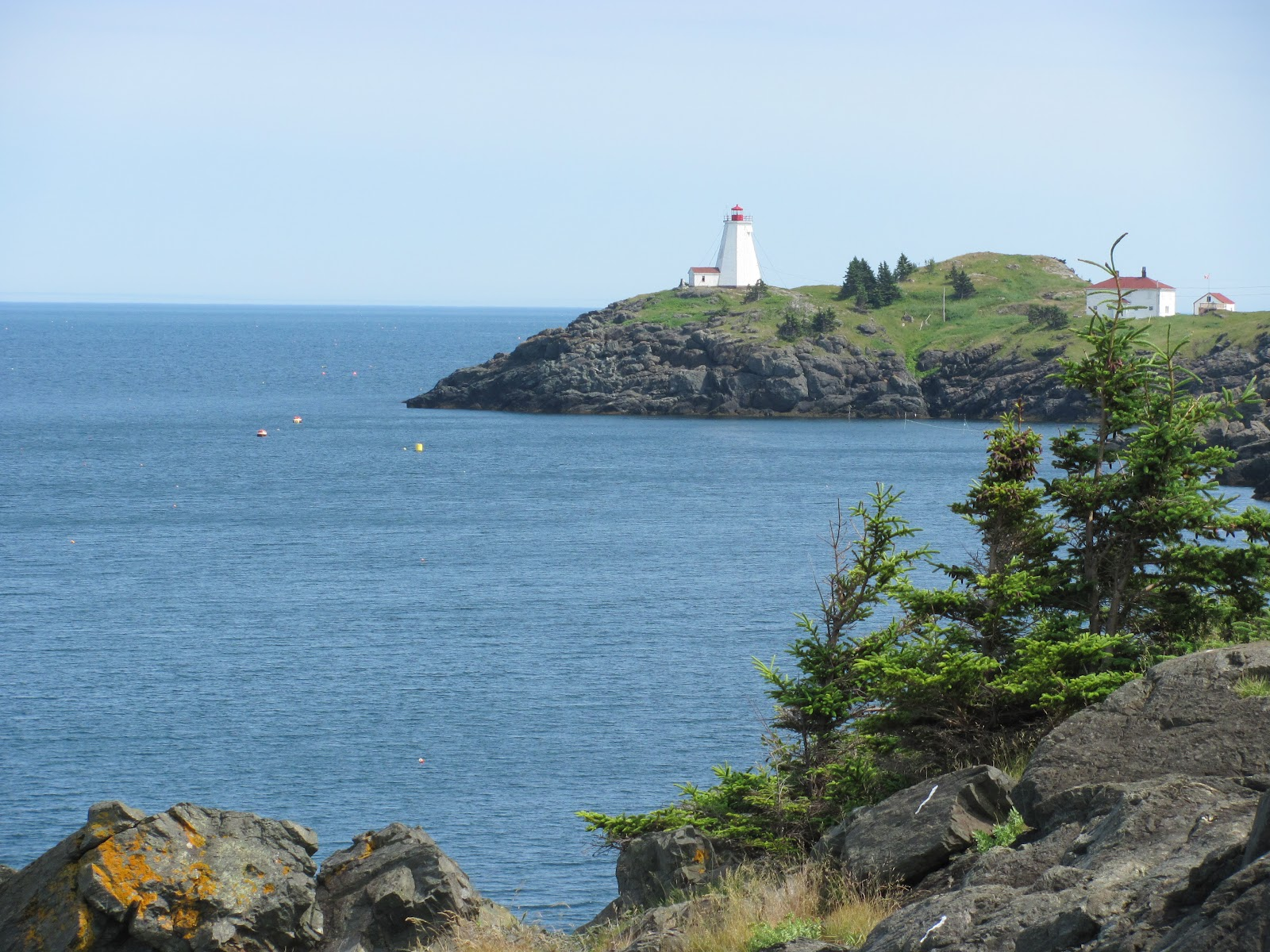Carl and I both agree that this is probably the most beautiful spot we have ever c&ed at. We quickly set up our tent and went to explore the island! & Funky Adventures: June 23rd: Grand Manan and Fundy