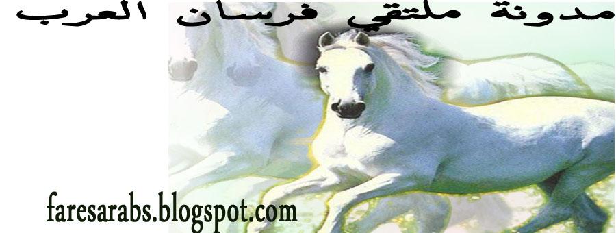 مدونة ملتقي فرسان العرب