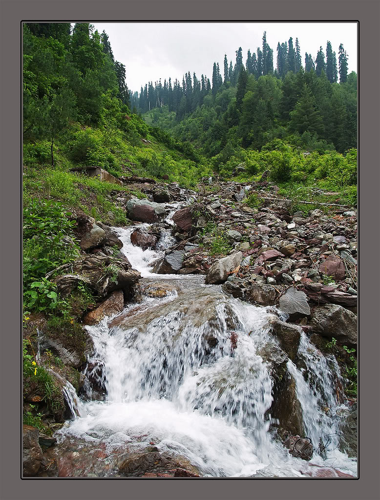 12494 naran kaghan waterfalls - photo #20