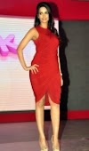 Mallika Sherawat Latest Hot Pics in Red Dress