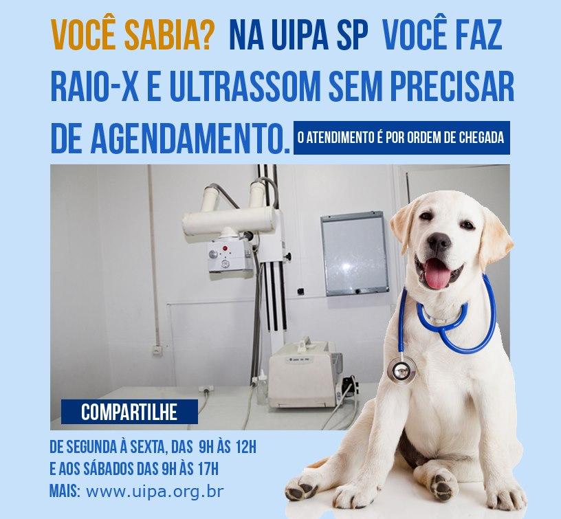 UIPA - SP