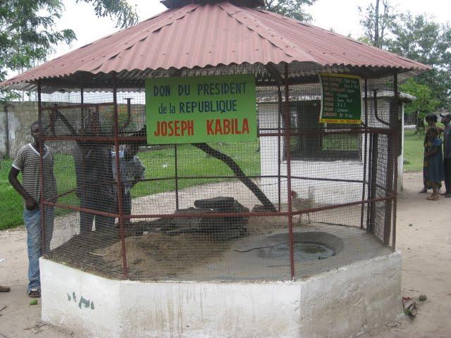 Mikolo na mikolo jardin zoologique de kinshasa for Jardin zoologique kinshasa