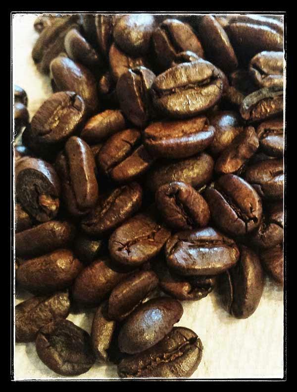 Java Delight Sumatra