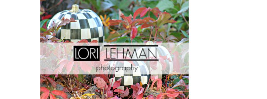Lori Lehman Photography