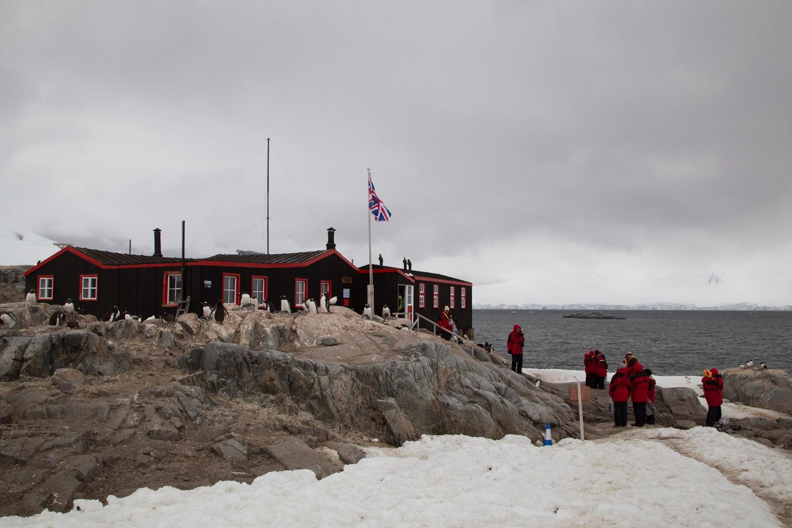 Crawdad on the loop antarctica port lockroy research for Port lockroy