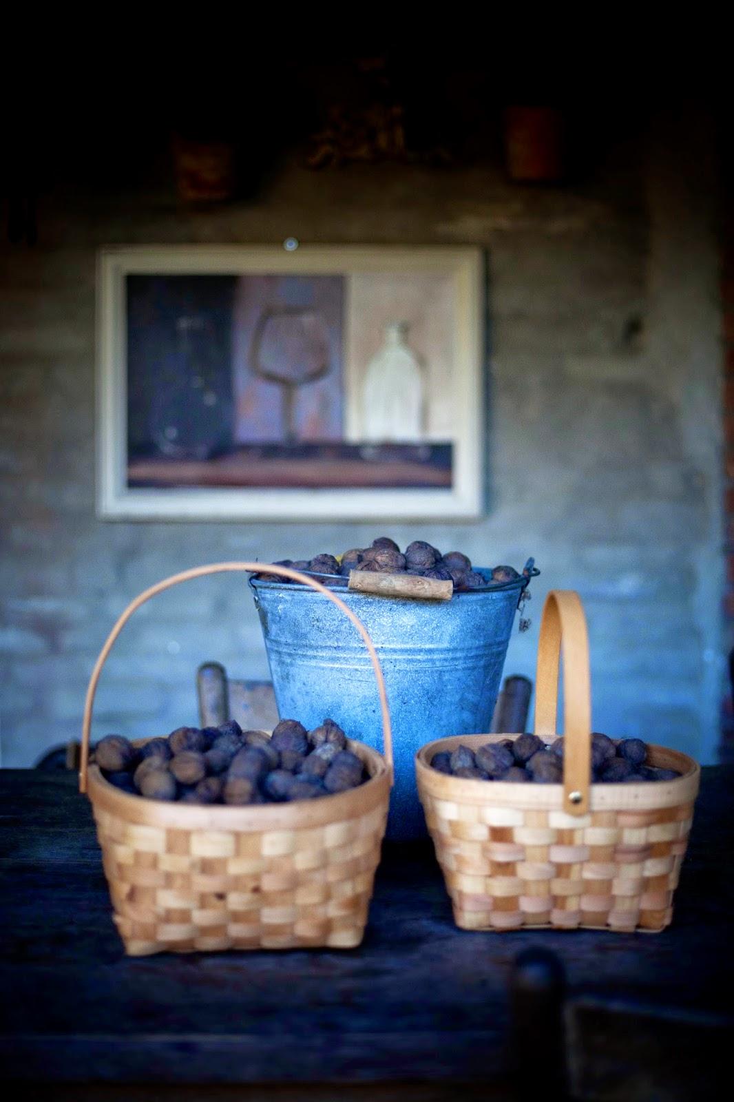Mijn huis, tuin & keuken ...: walnoten & powerpeul ...
