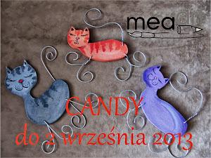Kociaste Candy u MeaArt