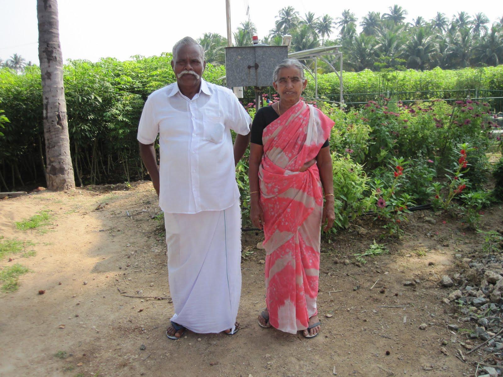ORGANIC FARMING IN TAMIL NADU PDF DOWNLOAD