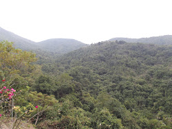 View from Shun mon Springs