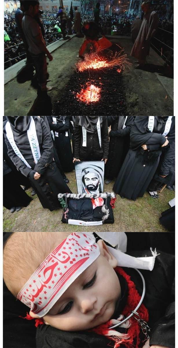 sambutan hari asyura oleh penganut syiah di iraq