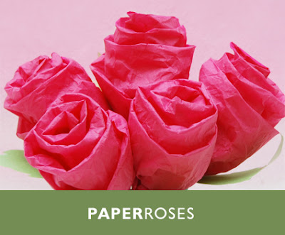 Paperroses Covernew