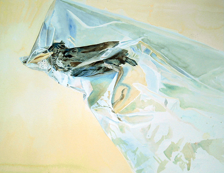nuncalosabre. Pintura | Painting - ©Rebecca Bird