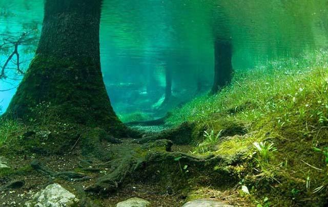As belezas do Lago Verde na Áustria