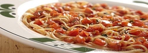 Olive Garden Recipes