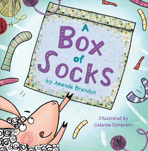 Picture book review of A Box of Socks by Amanda Brandon and illustrated by Catalina Echeverri.