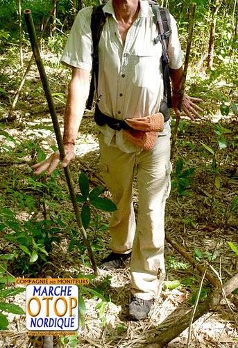 test bâtons marche nordique en bambou