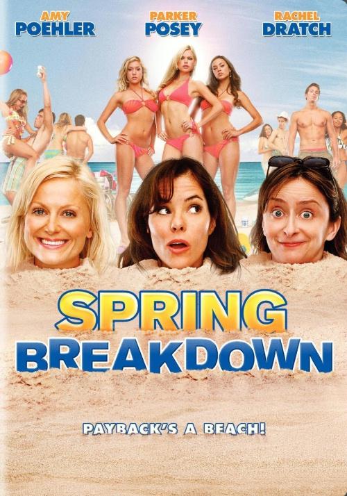 Ver Spring Breakdown (2009) Online