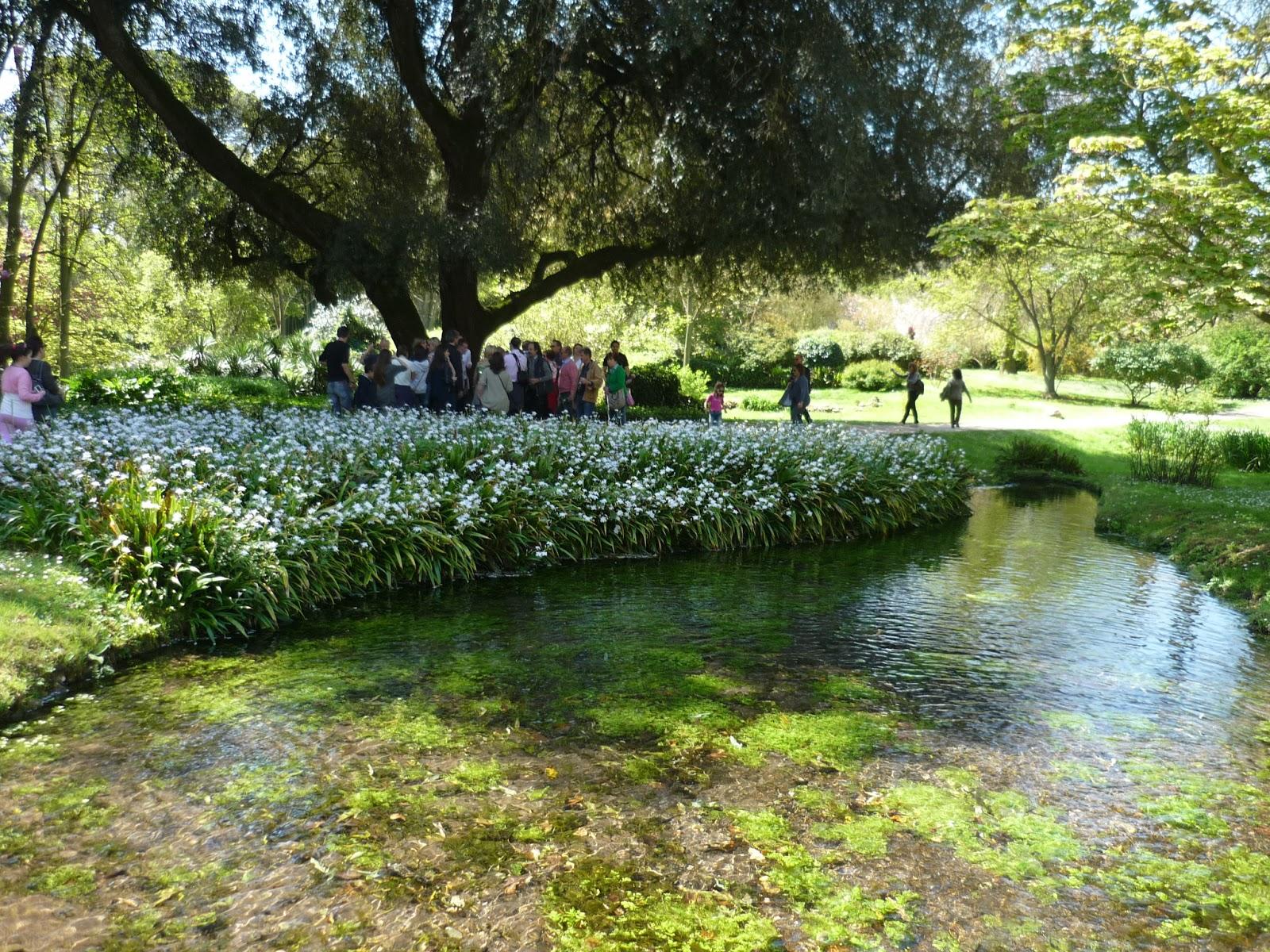 Divagazioni i giardini di ninfa for Laghetti nei giardini