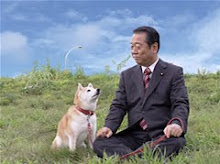 Sr.ボスケは柴犬が好き!