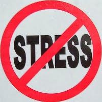 Beberapa Makanan Anti Stress