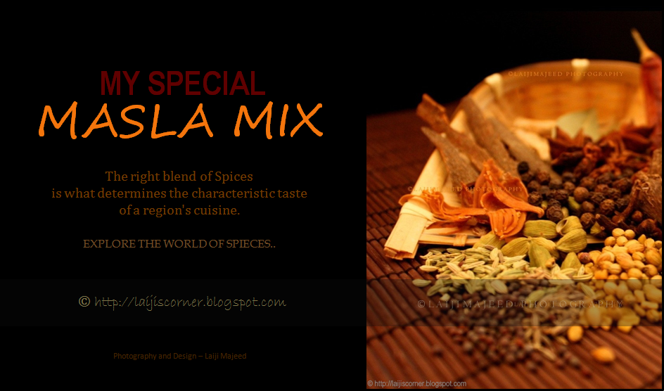 My Special Masala Mix