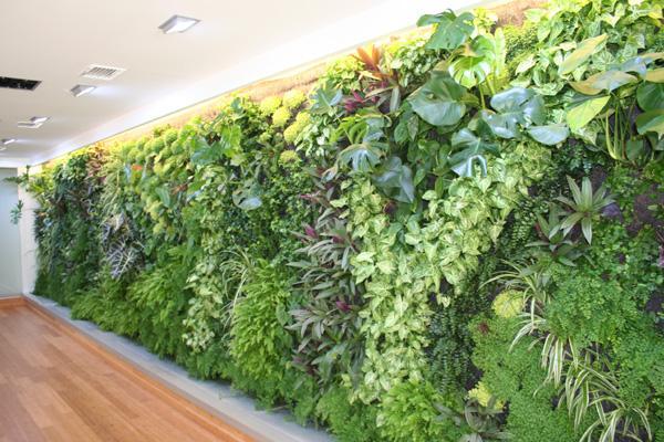 Jardineriagarnica muros verdes o jardines verticales - Muros verdes verticales ...