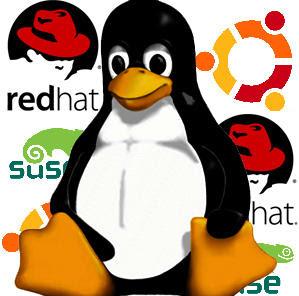 http://2.bp.blogspot.com/-zJ24rBfAV1E/TdSMTDwfMaI/AAAAAAAAC_g/MYMqwOLieYY/s400/linux-logo.jpg